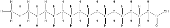 ácido de 18 átomos de carbono