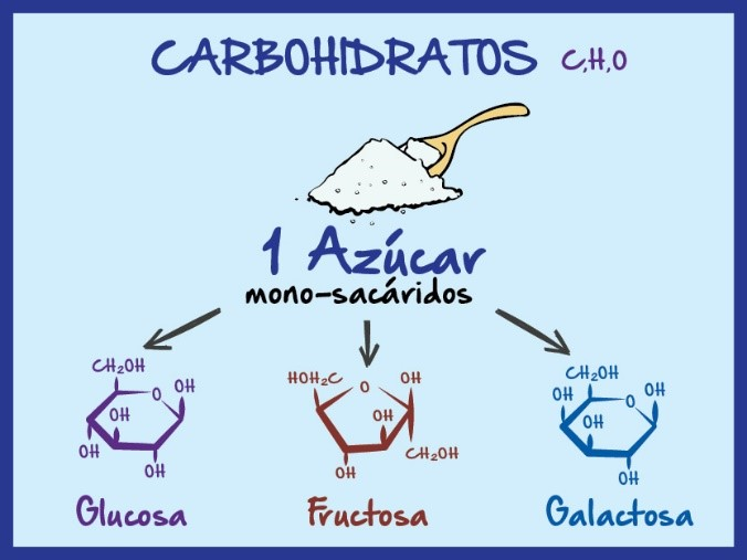 Carbohidratos azúcar