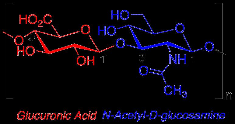 Estructura química del ácido hialurónico