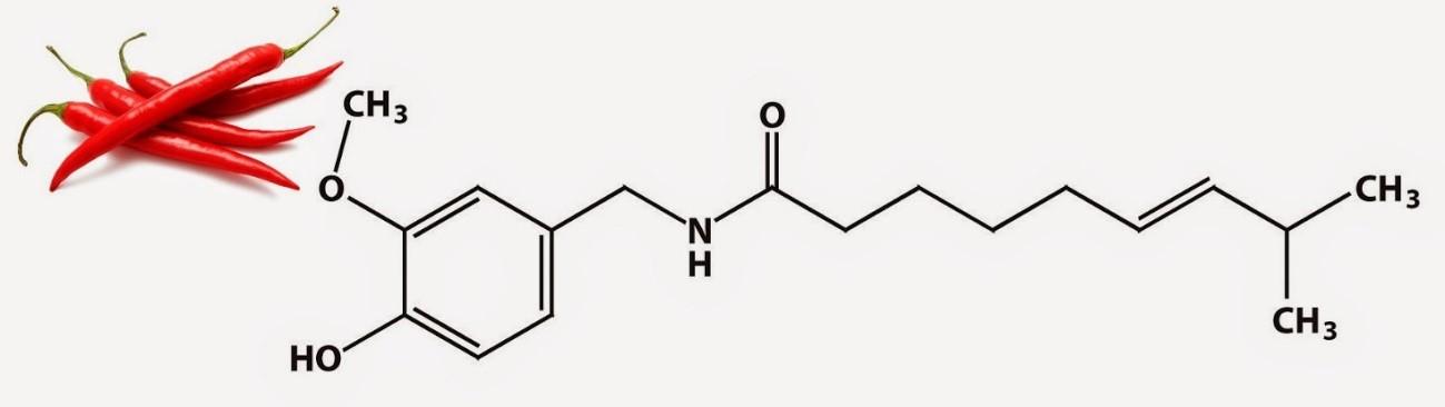 Molécula de capsaicina