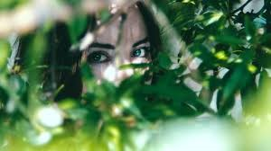 Ojos de mujer entre árboles
