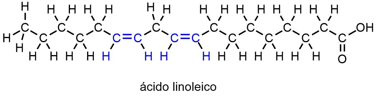 Molécula de ácido linoléico