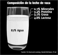Composición química de la leche emulsión
