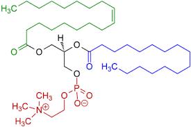 Molécula de lecitina emulgente del huevo
