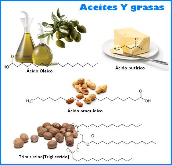Diferentes ácidos grasos en los alimentos