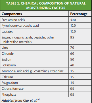 Componentes del NMF