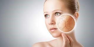 El aceite de oliva puede ser perjudicial para la función barrera de la piel