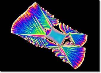 Cristales de ácido ascórbico vistos con luz polarizada