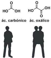 Ácidos carbónico y oxálico
