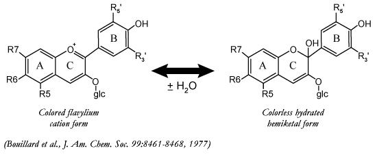 Diferentes estructuras químicas según el pH