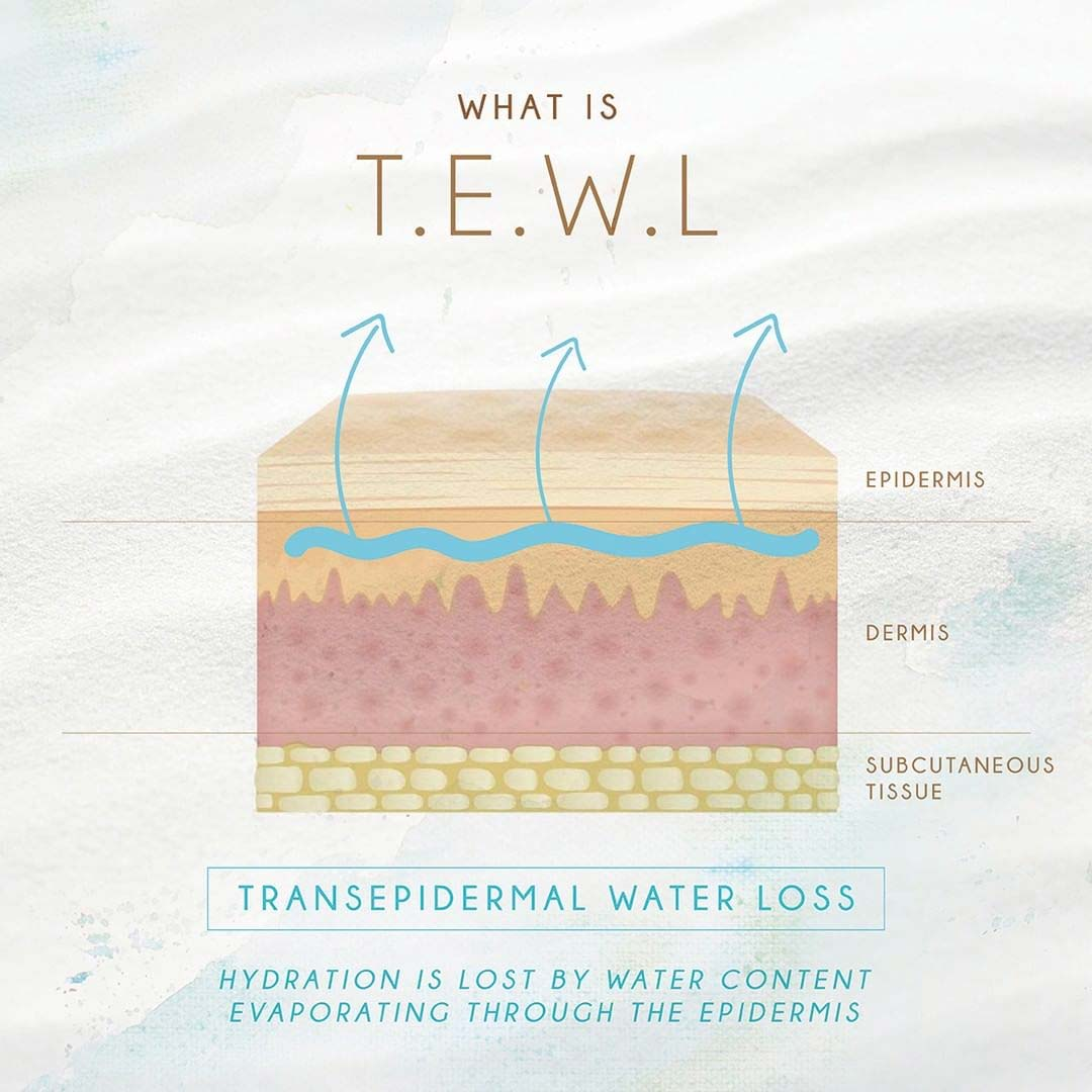 Transepidermic water loss