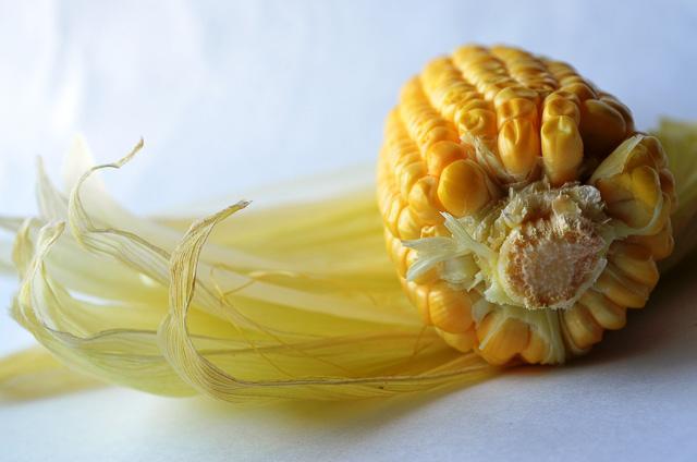 El maíz contiene hidratos de carbono
