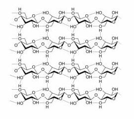 Varias cadenas de polisacáridos unidas