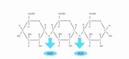 Polimerización de la glucosa