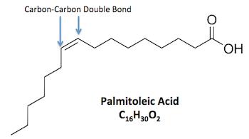 Estructura química del ácido palmitoleico