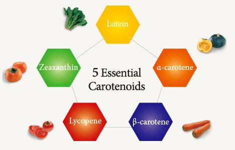 Carotenoides esenciales