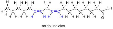 El aceite de semillas de calabaza contiene gran proporción de ácido linoleico