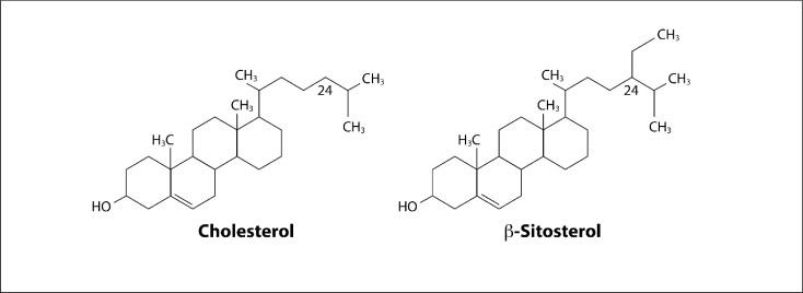 Analogía entre el colesterol y el betasitosterol