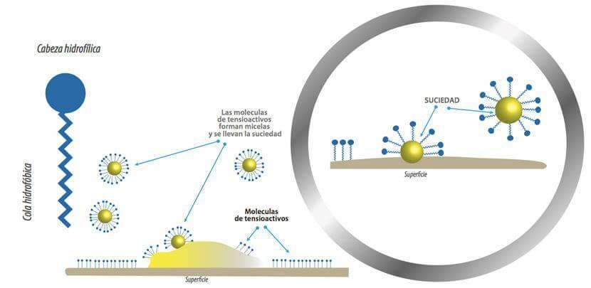 Moléculas de tensioactivos