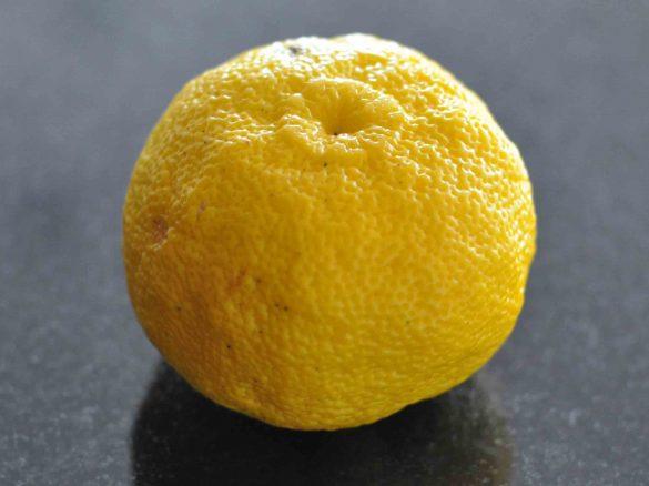 Fruto del árbol de yuzu