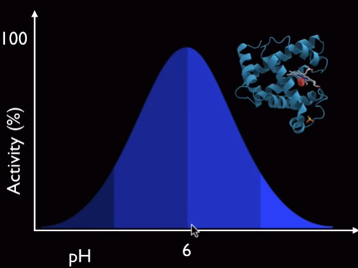 Efectividad de las proteínas respecto al pH