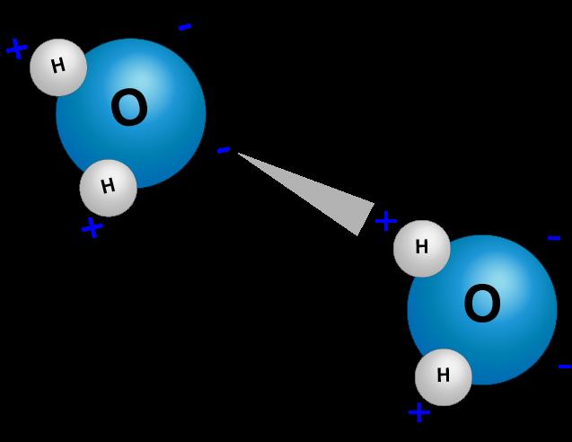 Desplazamiento conjunto de las moléculas de agua