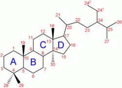 Estructura química de un esteroide