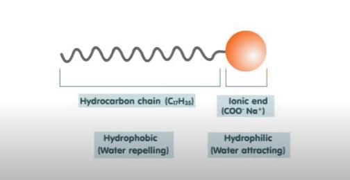Estructura de una molécula de detergente